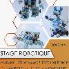 Vacances Toussaint | Stage Robotique